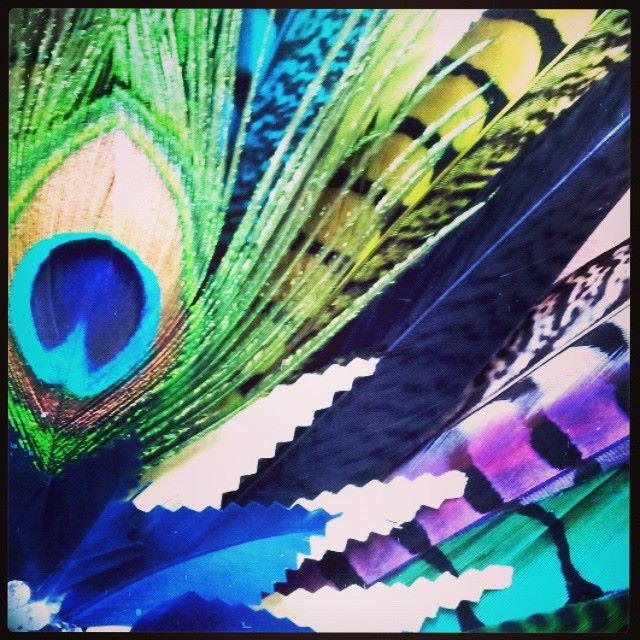 The Gypsy Queen of Paradise Divalicious Headdress Feathers